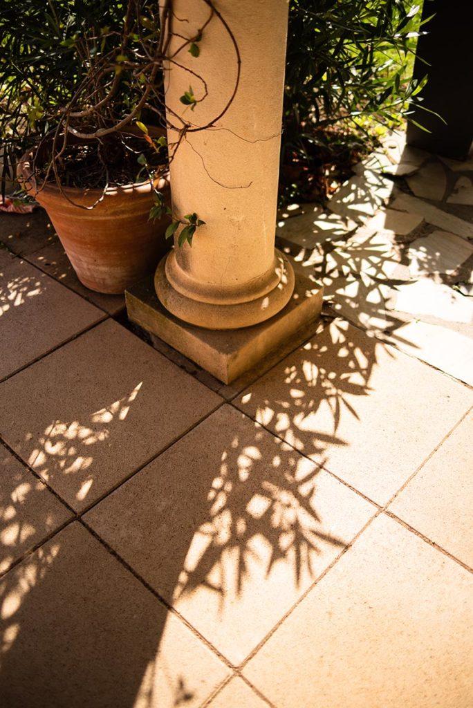 Et la lumière fut ! Ombres de feuillage sur le sol.