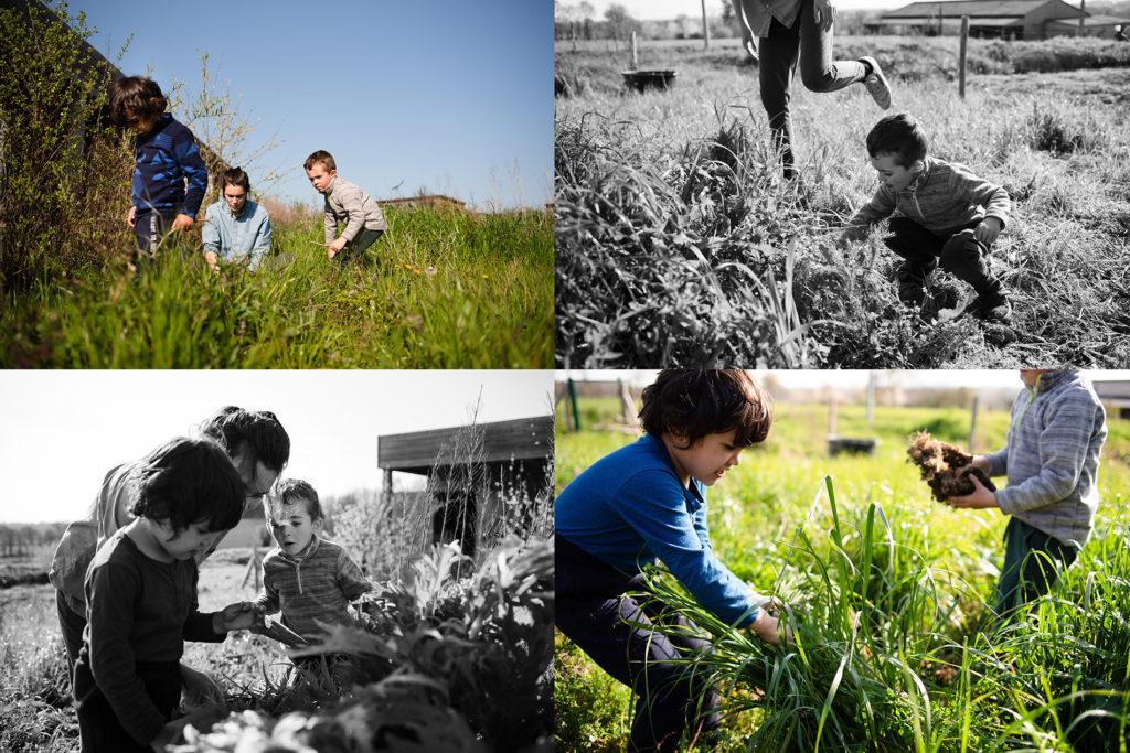 Reportage du quotidien près de Rennes. Montage de 4 photos représentant des moments de partage en famille à l'extérieur.