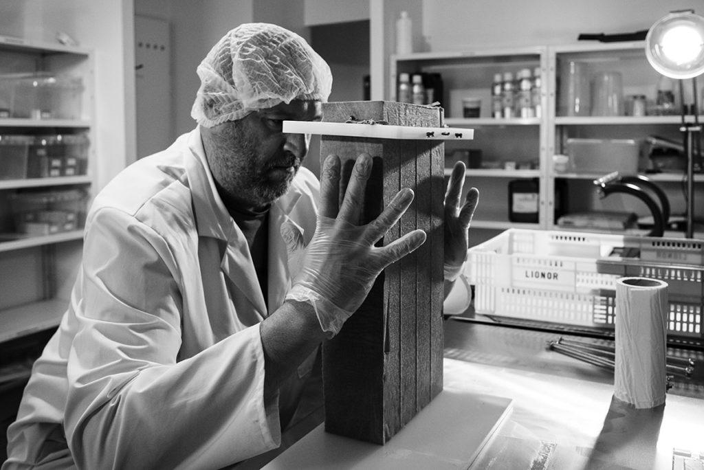 Reportage artisan en Mayenne, avec Sacé Nature. Partie 2. Photographie noir et blanc, découpe d'un savon.