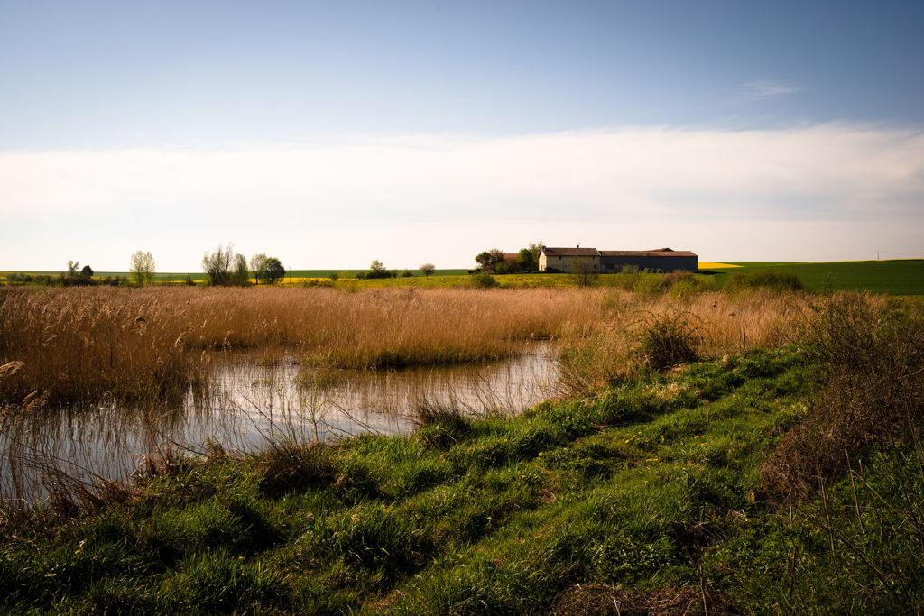 Weekend touristique et retrouvailles entre amis dans la Marne. Ferme dans la campagne près d'un étang.