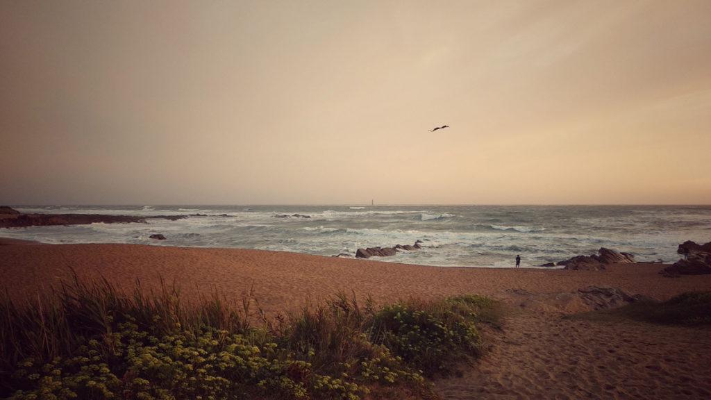 Photographe, apprendre à lâcher prise. Plage au soleil couhant, une personne fait du cerf-volant.