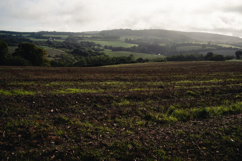 Sortie nature à la chapelle du Montaigu, en Mayenne. Paysage des champs labourés sur fond de soleil matinal et de brume.