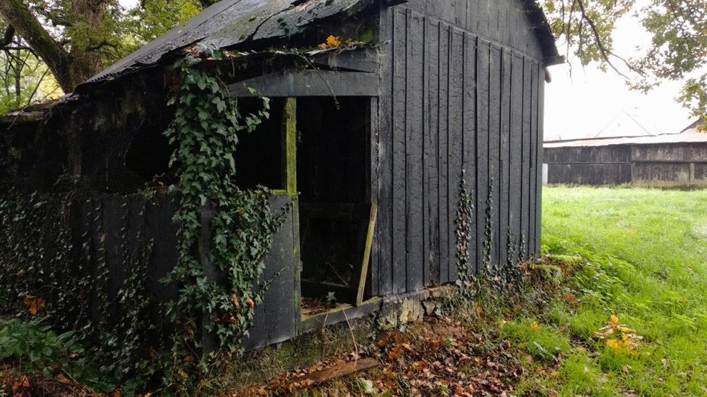 Formation à la macrophotographie avec le CPIE Mayenne. Photographie d'un cabanon de jardin à Fontaine Daniel en Mayenne. Cabanon abandonné envahi par le lierre.