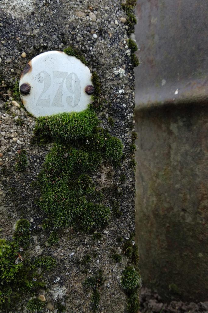 Formation à la macrophotographie avec le CPIE Mayenne. Photographie de détails, gros plan sur un numéro de jardin, plaque envahie par la mousse. Fontaine Daniel, Mayenne.