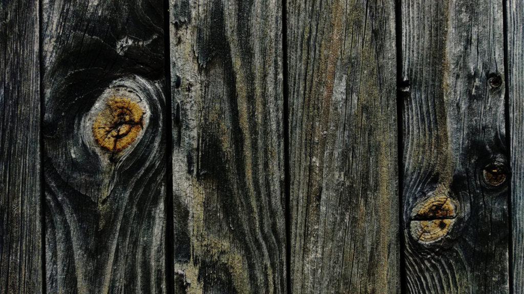Formation à la macrophotographie avec le CPIE Mayenne. Photographie de détails, gros plan d'un cabanon de jardin à Fontaine Daniel en Mayenne. Texture du bois.
