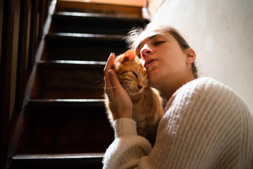 Rétrospective 2019, mes photos préférés ! Reportage de famille en Mayenne. Portrait d'une jeune fille câlinant son chat. Photographe Pascaline Michon.