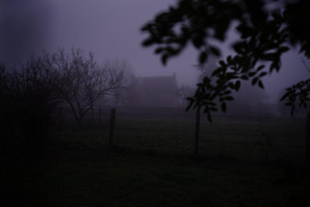 Quand je photographie mon jardin à la nuit tombée (et dans le brouillard) ! Photographie d'une paysage enveloppé dans le brouillard. On devine une maison au loin à travers des feuillages. Photographe Pascaline Michon.