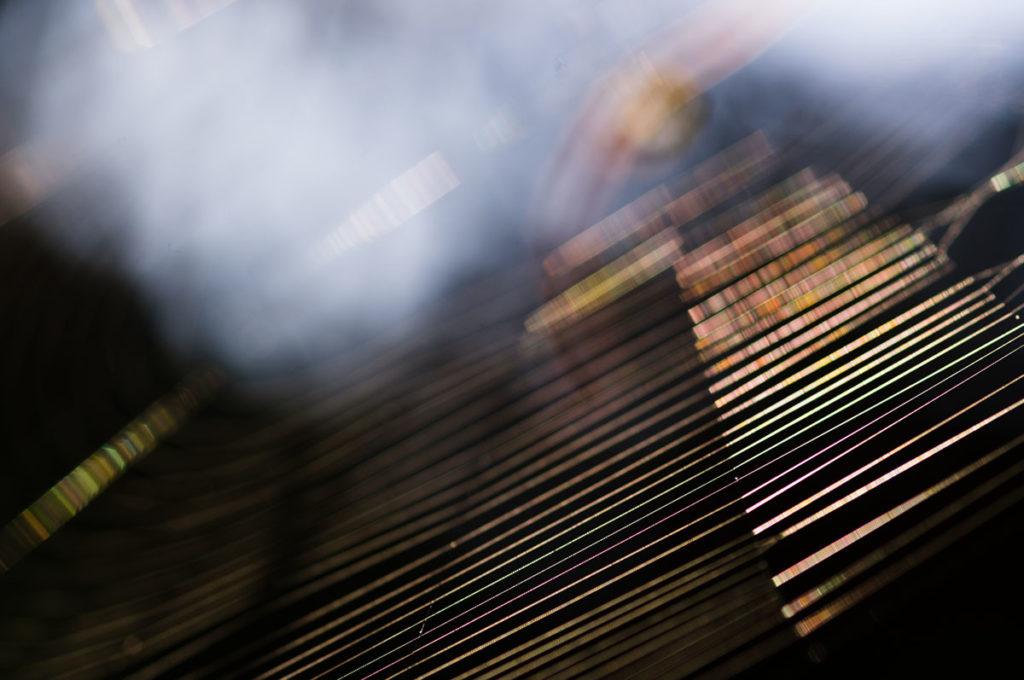 As-tu des idées pour mes prochains articles ? Photographie artistique d'une toile d'araignée. Photographe Pascaline Michon.