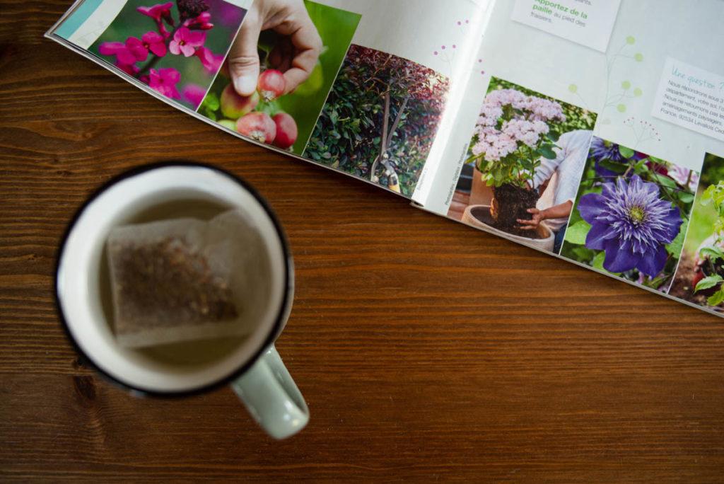 Défi photo une journée dans mon quotidien. Pause thé et magazine de jardinage.