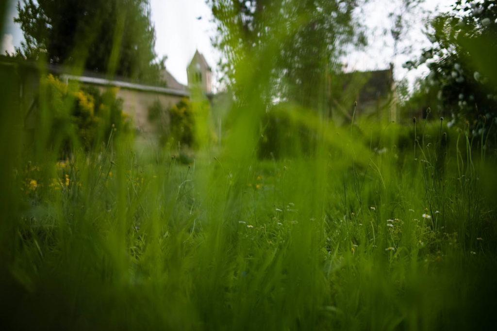 L'église du village à travers les herbes folles du jardin. Une de mes valurs phare : la simplicité.