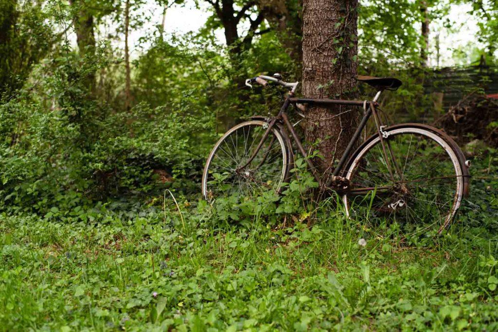 Un vieux vélo sert de décor dans le jardin. Une vie simple en Mayenne.